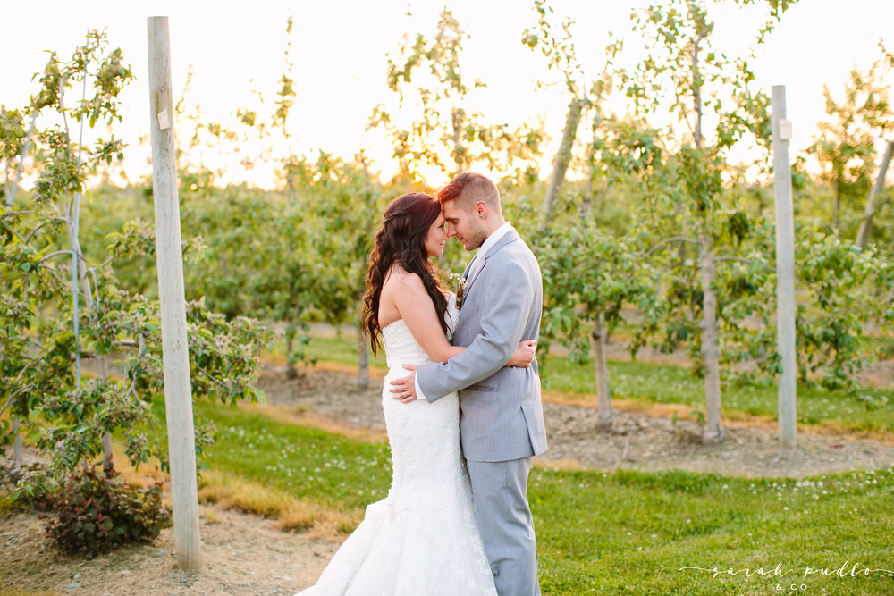weddings-sweet-berry-farm-middletown-ri