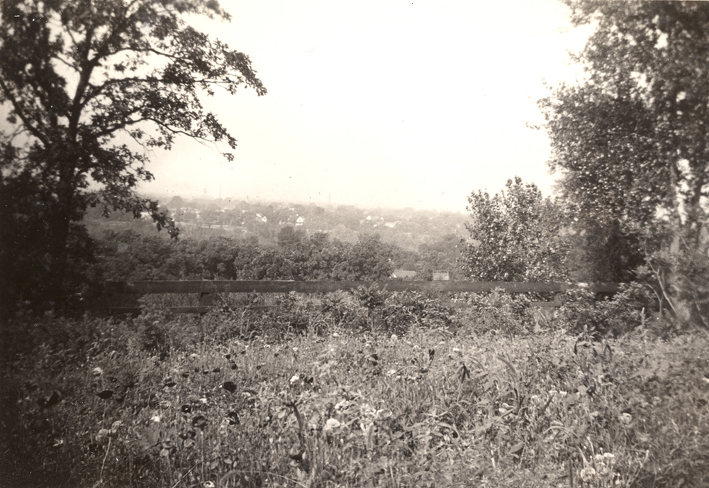In the early years at the Willey House the river bluffs rolled gently in a series of terraces and swales down to the Mississippi, the neighborhood below not yet built, and the landscape absent of trees.