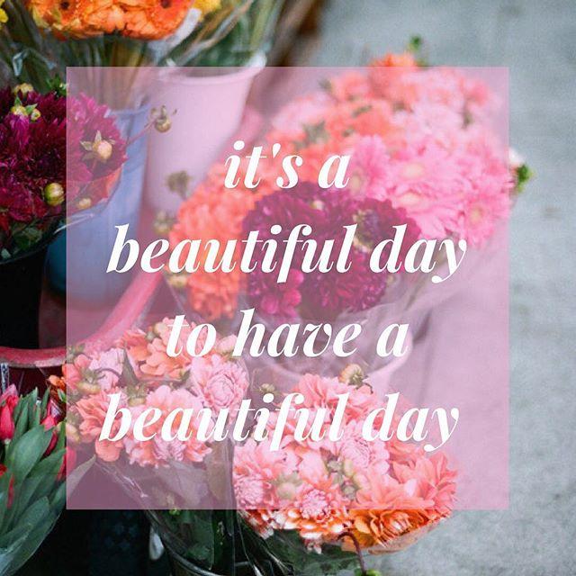 Make your Monday amazing! #mondaymotivation