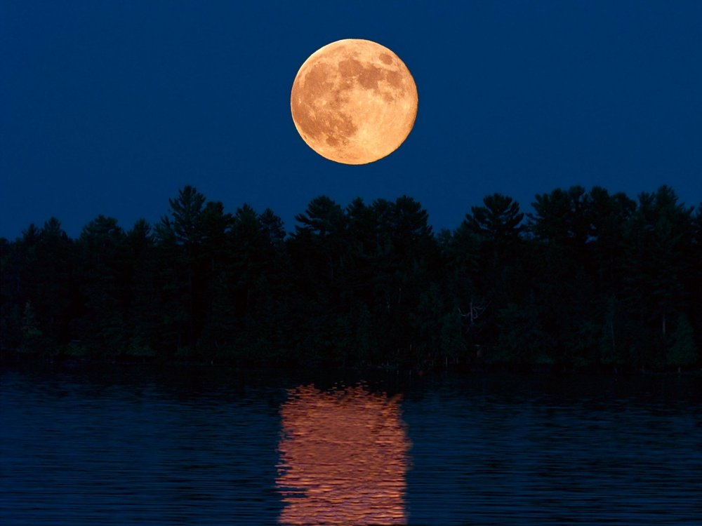 full-moon-lake-reflections-flickr-wplynn-ccbynd2-750157908894e5af0fcbo.jpg