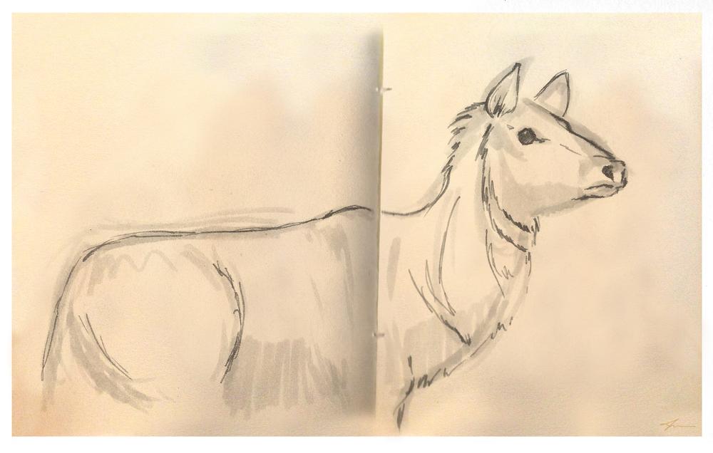 Sketch_JGeiger_15.JPG