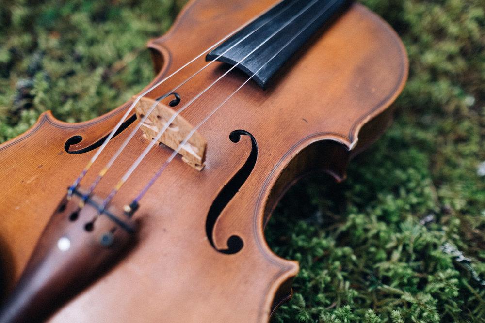 doug_violin5.jpg