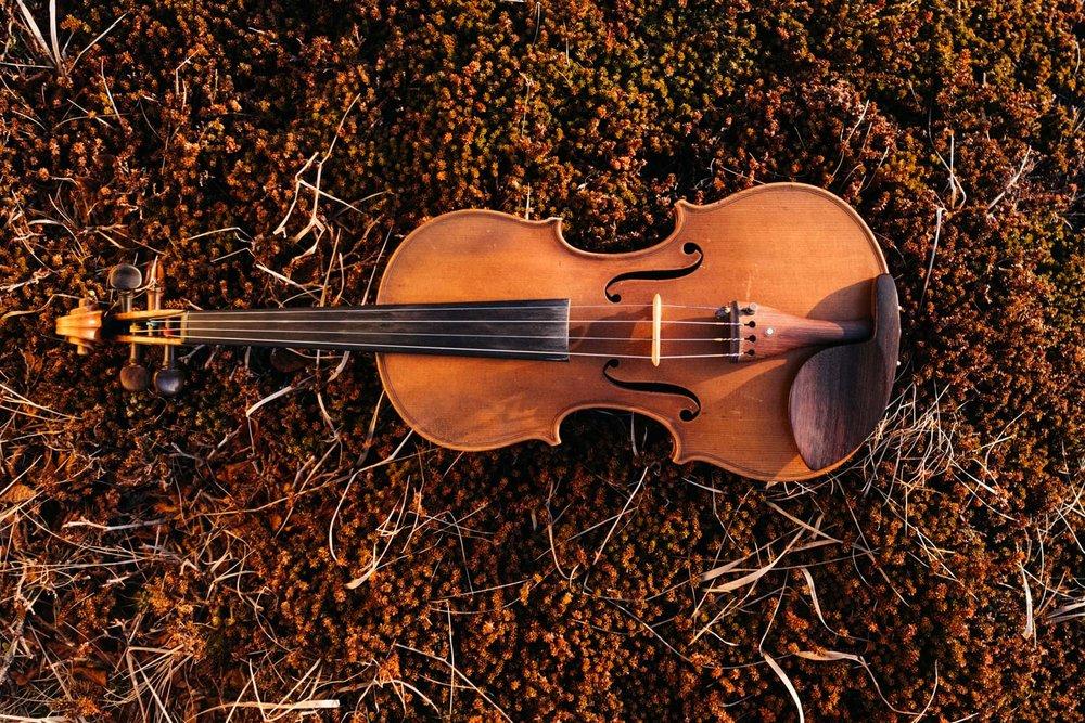 doug_violin9.jpg
