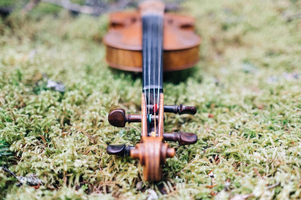 doug_violin7.jpg