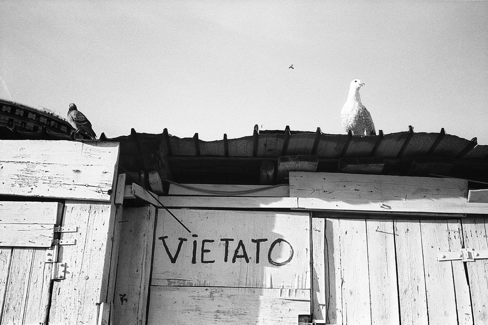 fabio_burrelli_street_photography_kodak_TX400_027.jpg