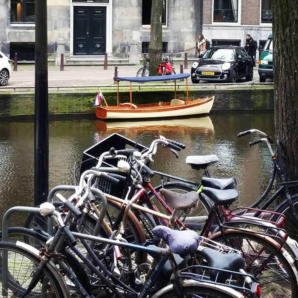 budsin boats.jpg