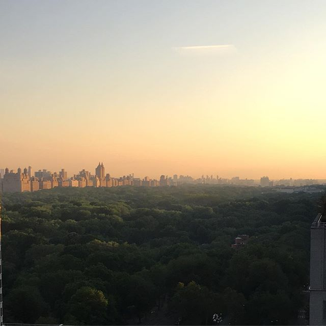 """CENTRAL PARK MORNING"" Enjoy the day ! #mindfulliving #mindfulness #takeabreak #lmnopphilosophy #meditate #nycparks #natureinthecity #aware #openeyeliving #centralpark #trees #welovetreessomuch"