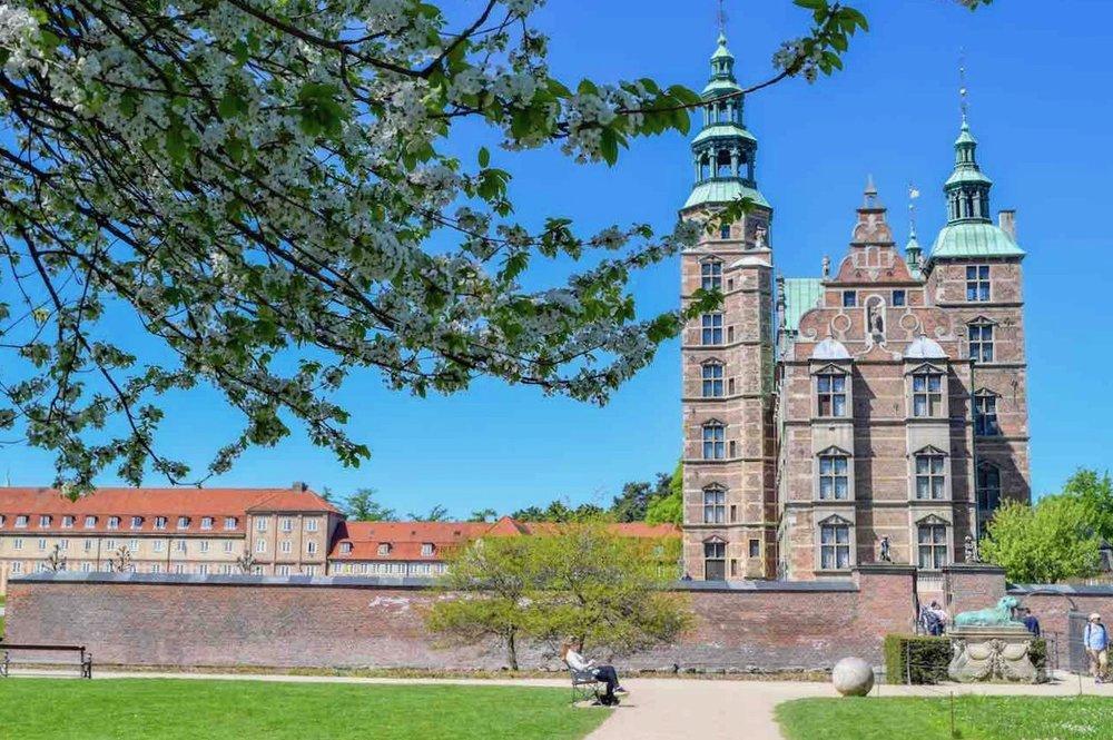 rosenborg (1).jpg