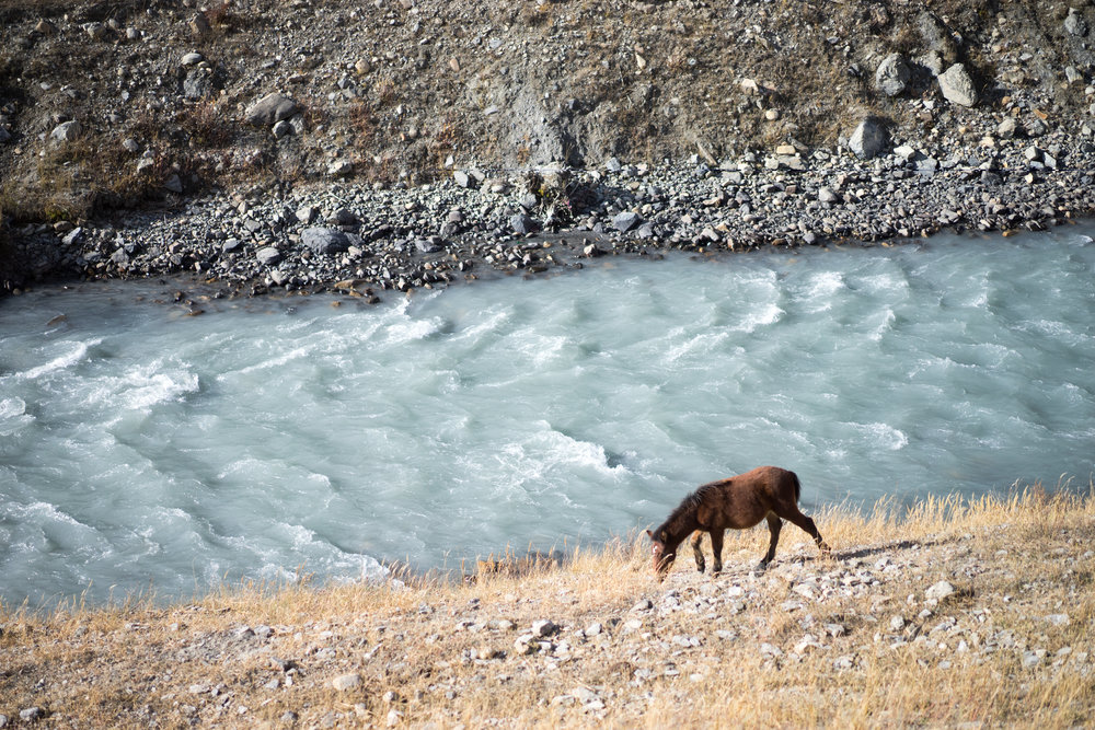 Himalayan river — Care to cross?