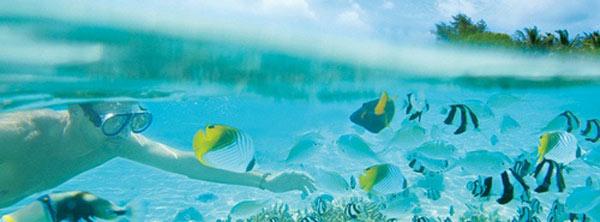 snorkeling tailandia.jpg