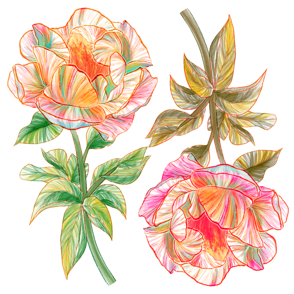 2018.5.11_floral thing_print95.png