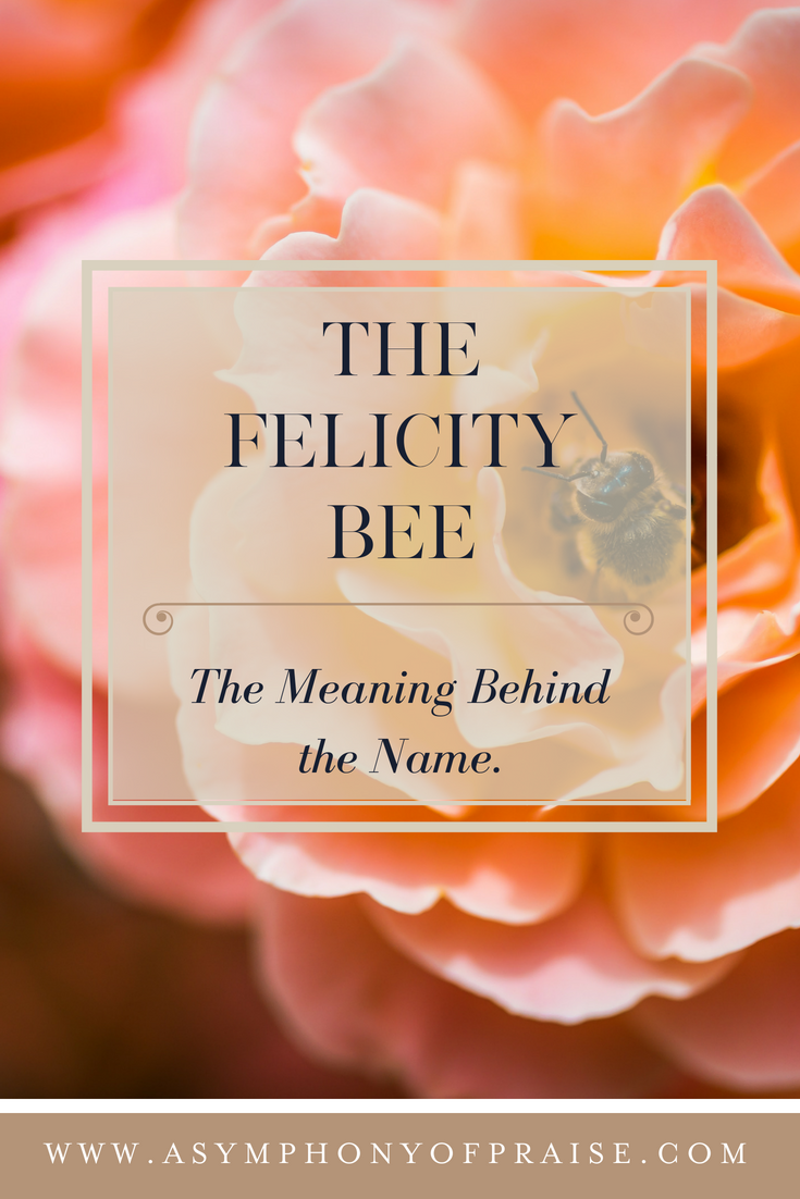 The Meaning Behind the Name THE FELICITY BEE.