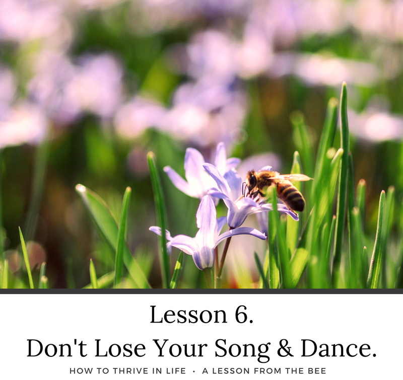 How To Thrive in Life. Lessons from the Bee.