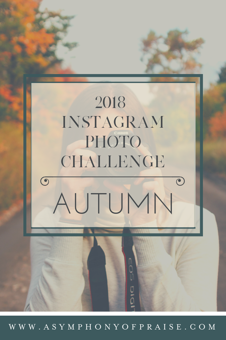 October Instagram Photo Challenge at A Symphony of Praise!