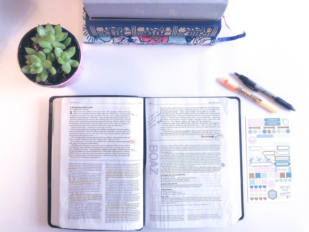 My  NKJV Life Application Bible  It is one of my favorites!