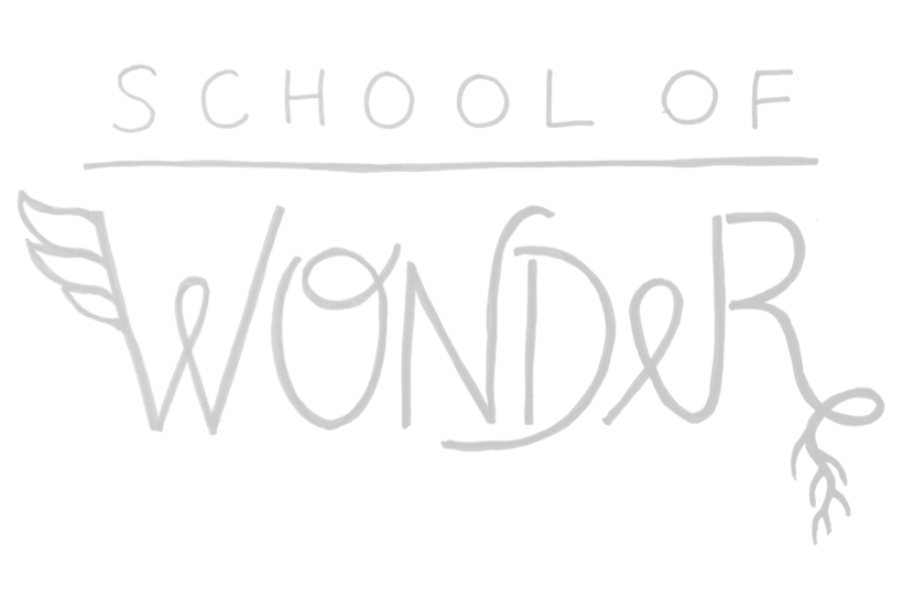SCHOOL OF WONDER