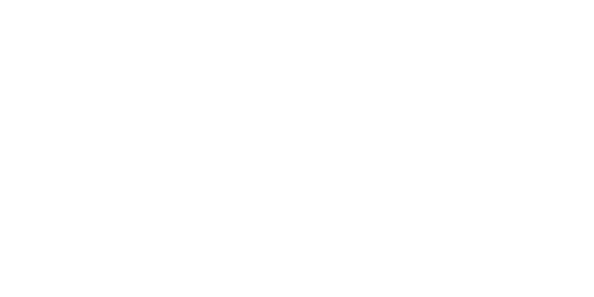 The Burdine Johnson Foundation