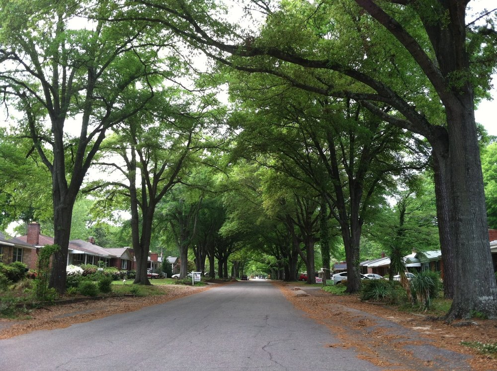 Historic neighborhood of Rosewood...