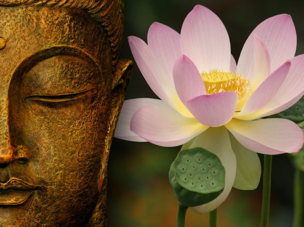 lotus-flower-buddha-wallpaper-2.jpg