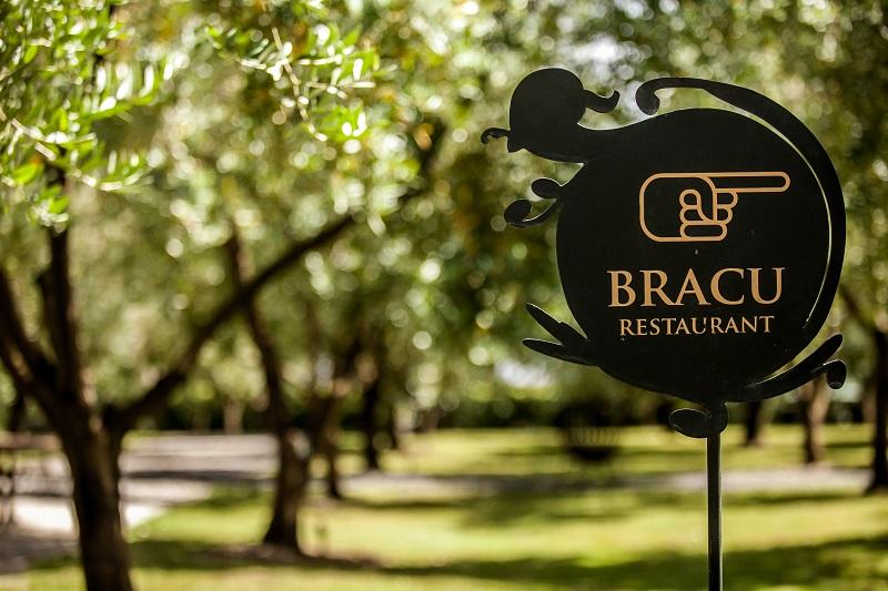 Bracu-6780.jpg