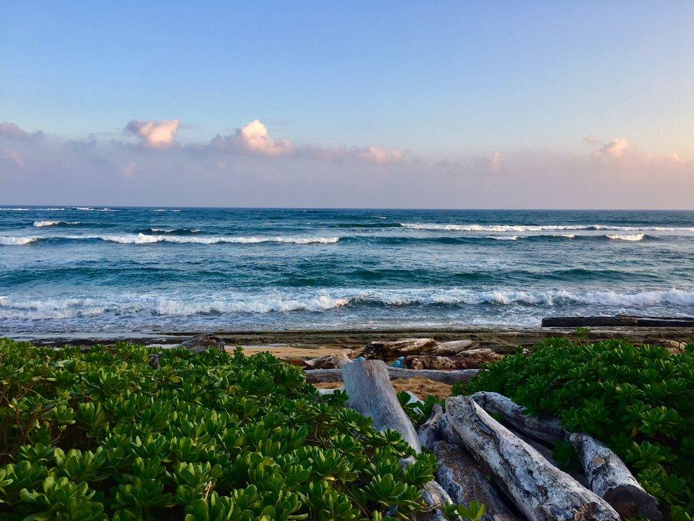 beach and waves.jpg