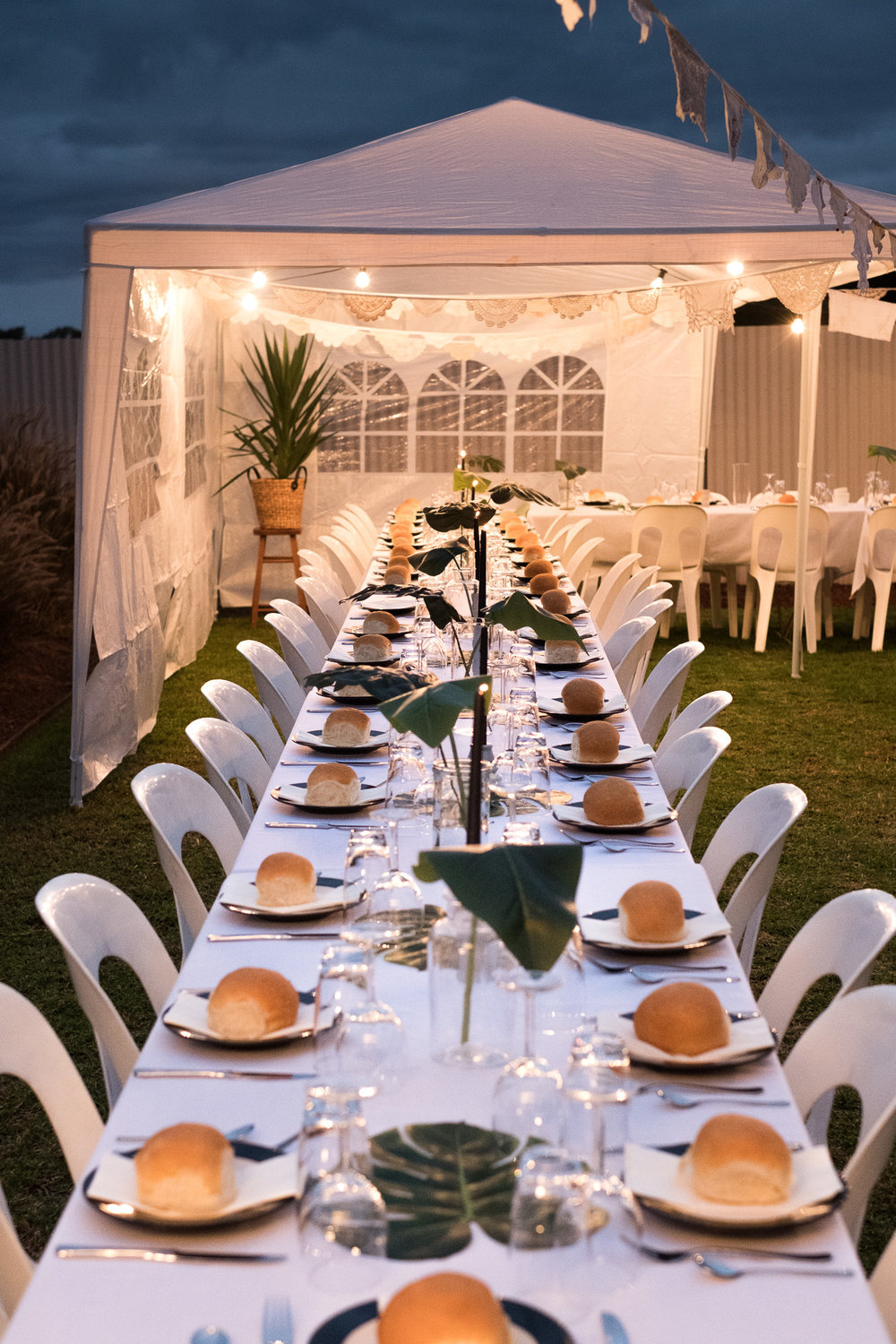 backyard weddings u2014 will and co photography adelaide wedding