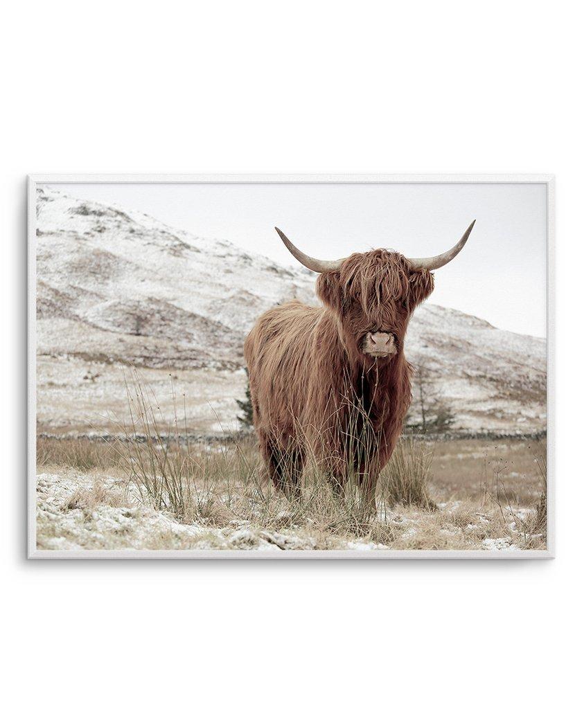 Highlander Landscape from  Olive et Oriel  $29.95 - $349.95 IG:  @oliveetoriel