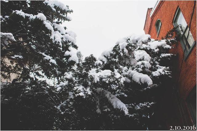 Photo Feb 10, 6 41 57 PM.jpg