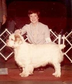 Judith Rickey - Judith Rickey, long time Clumber spaniel breeder and fancier, passed away on April 10, 2014. She was surrounded by five of her treasured Clumbers. In honor and remembrance of a beloved friend of the breed, R. Tamara deSilva has generously funded the Judith Rickey Fund. This will be a continuing annual gift.The Judith Rickey Fund will be used to support continuing educational and outreach efforts of the Clumber Spaniel Health Foundation. Judy was a champion of the breed, and health was of the utmost important to her. As Tamara wrote in her remembrance letter