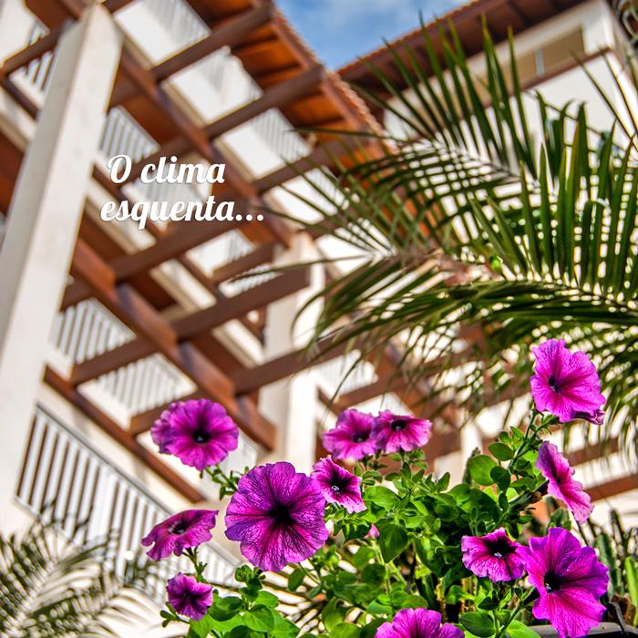 Gif-da-primavera-hotel-torres-da-cachoeira4.jpg