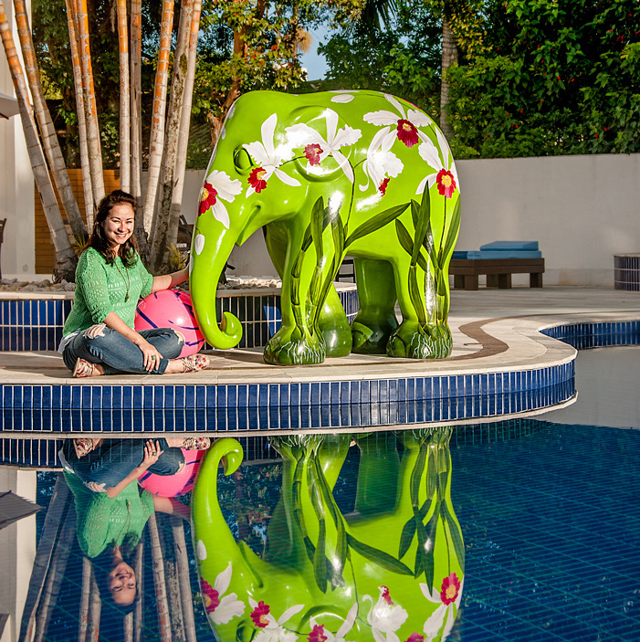Hotel-Torres-da-Cachoeira-Elephas-purpurata-por-Lu-Mori2-low.jpg
