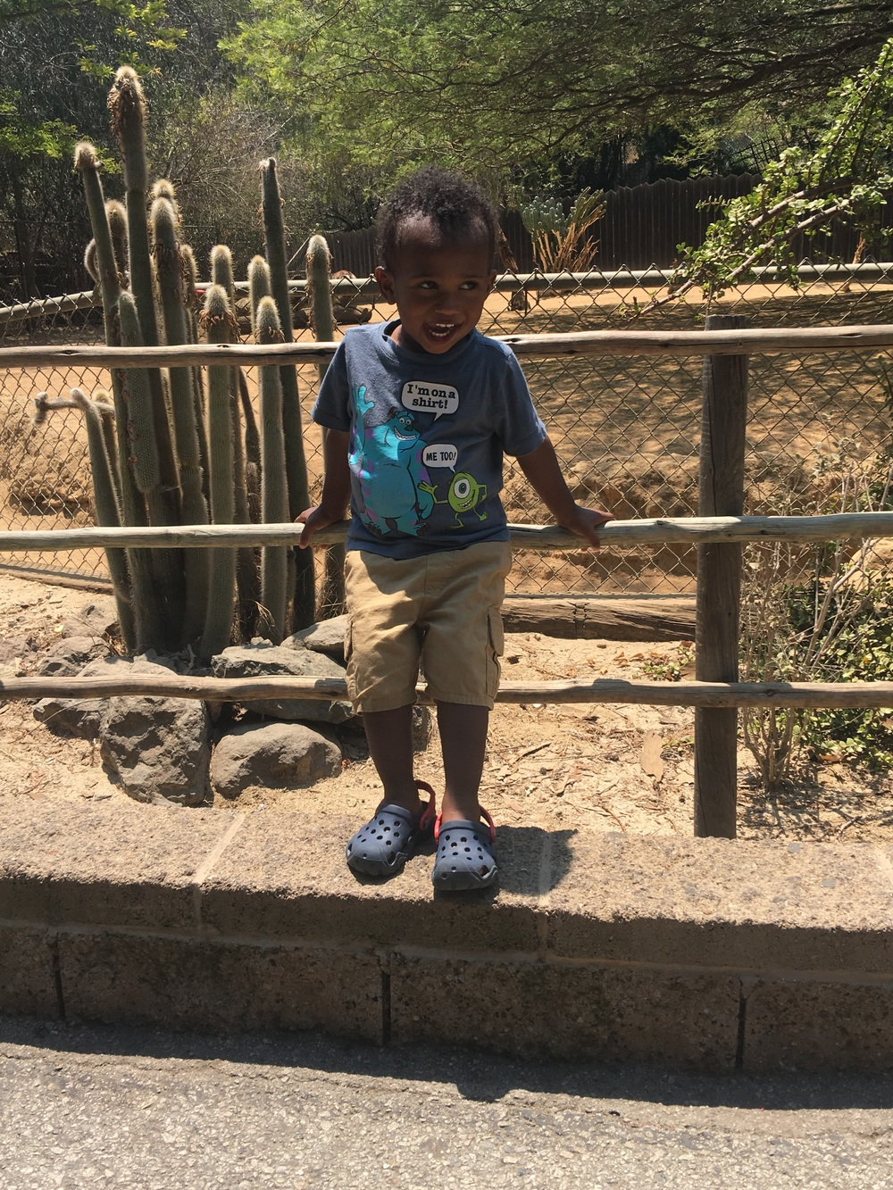 Hanging at the Los Angeles Zoo