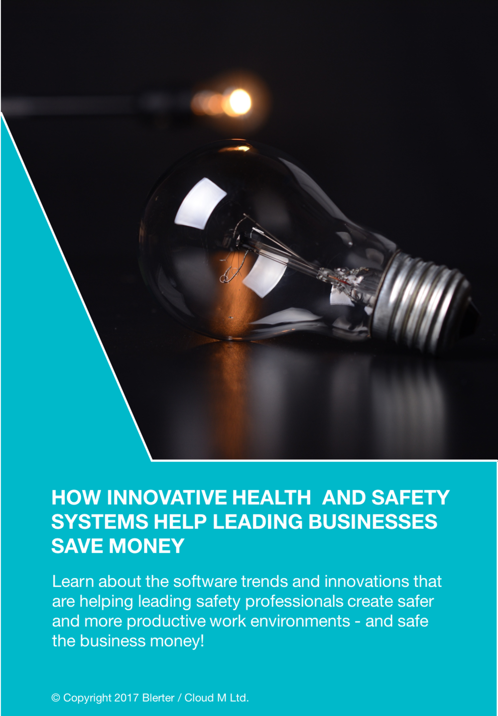 White Paper - health and safety systems that help save money
