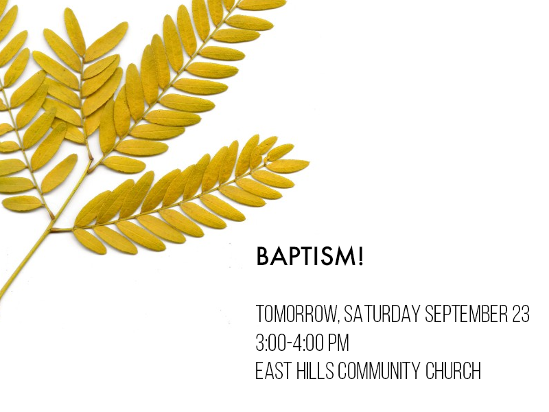 9.22.17 Fall Baptism.png