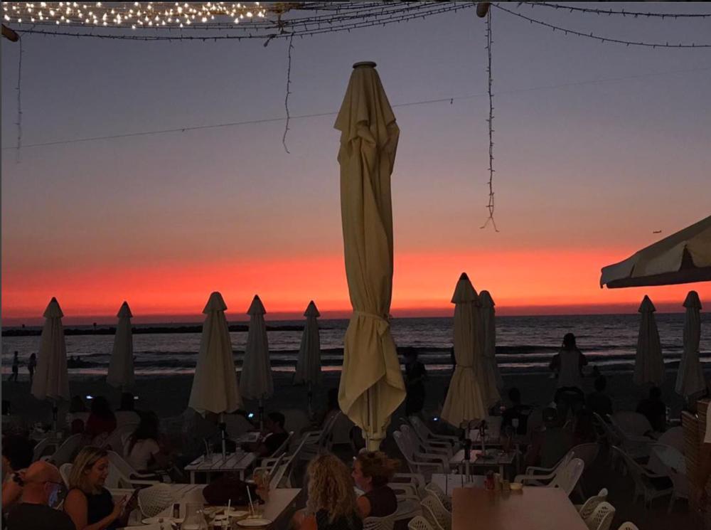 קאליפסו, חוף פרישמן. צילום: מתוך חשבון האינסטגרם של שף  עומר מילר