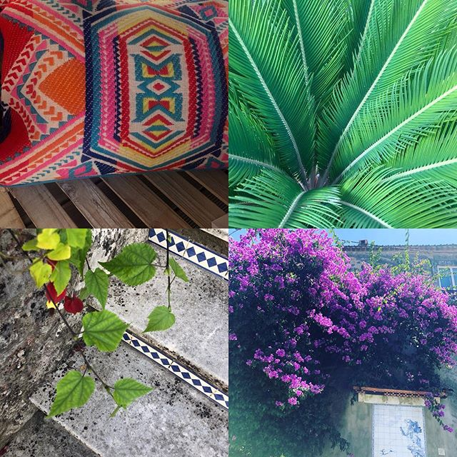 colour + patterns in Portugal - inspiration all around 🌿⛱ . . . #holidays #creativity #inspired #patterns #colourmix #nature #relax #weavinglife #designandweave #naturesbeauty #weaving
