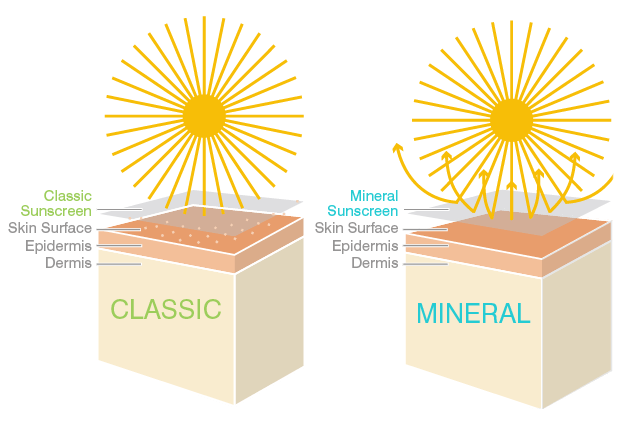 A diagram that shows how both chemical (classic) and mineral sunscreen work to protect the skin.   Image Source: www.coolasuncare.com