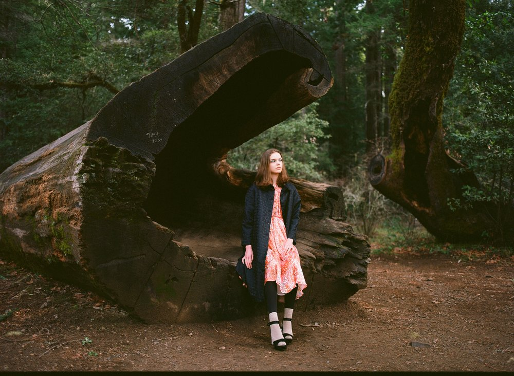 IvanaHelsinki-Trees2019-Satincoat+Norma-6.jpg
