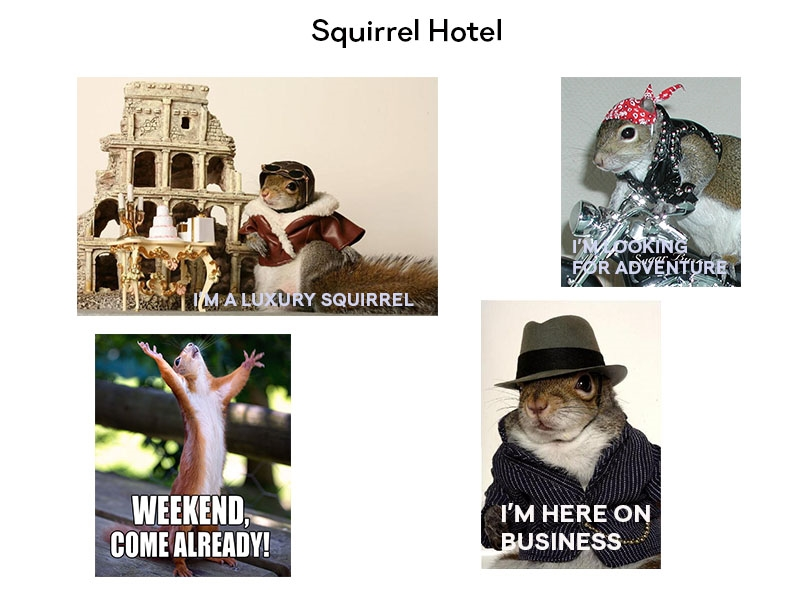What kind are you? Luxury, Adventure, Weekender or Business Squirrel?