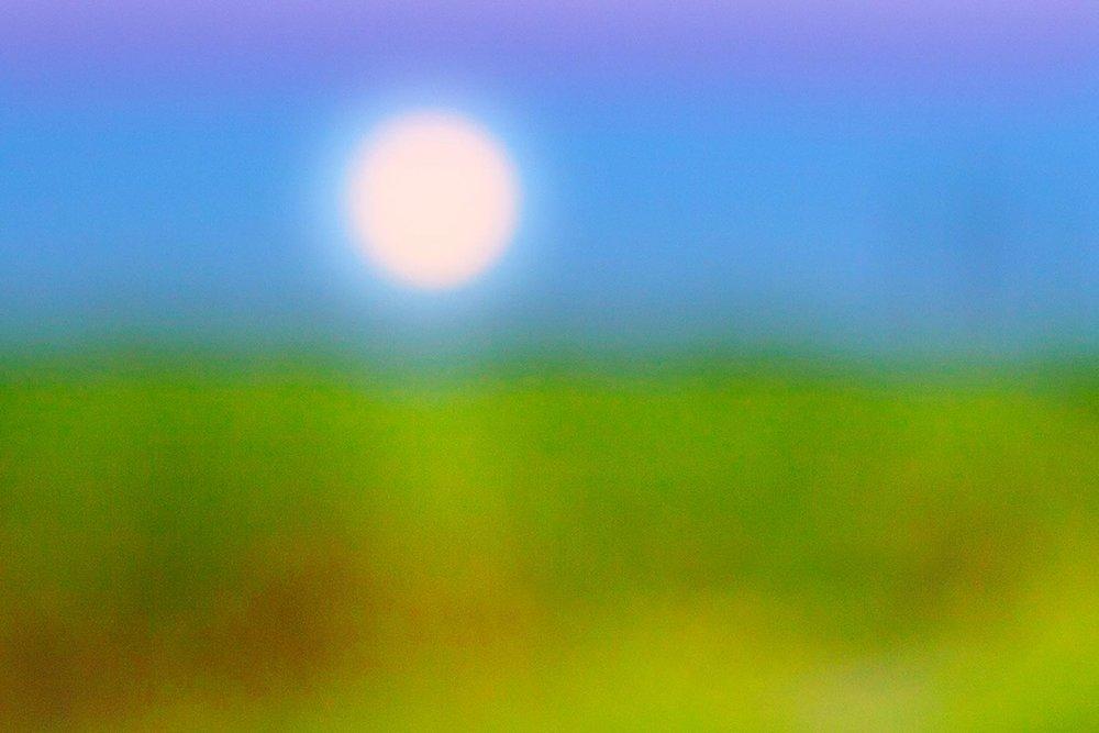 Cheryl Maeder Celestial Babies Sugarcane Moonlight