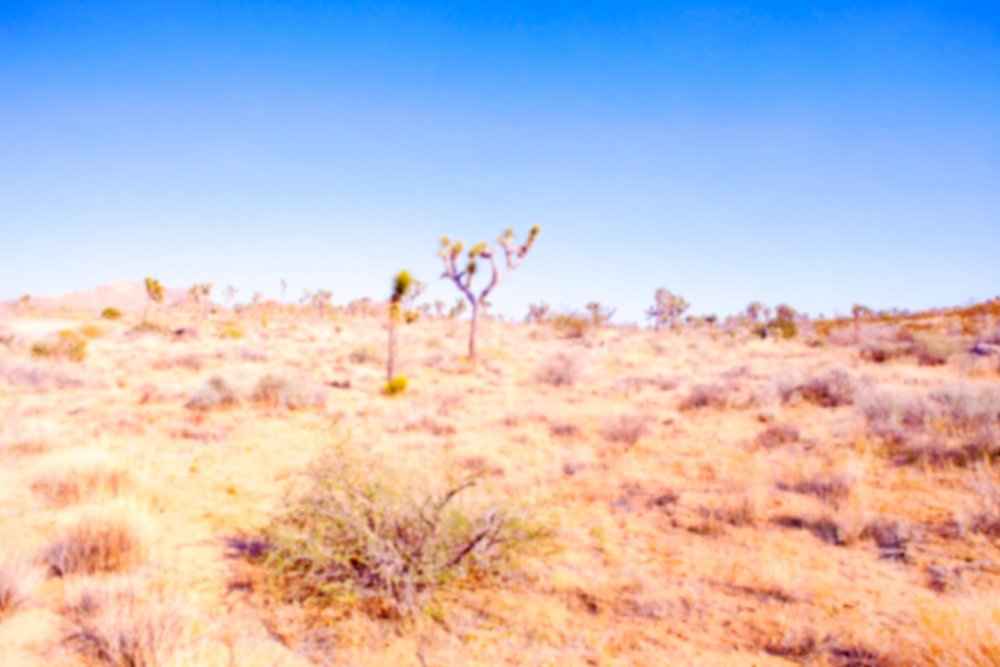 Cheryl Maeder Celestial Babies Desert Plains
