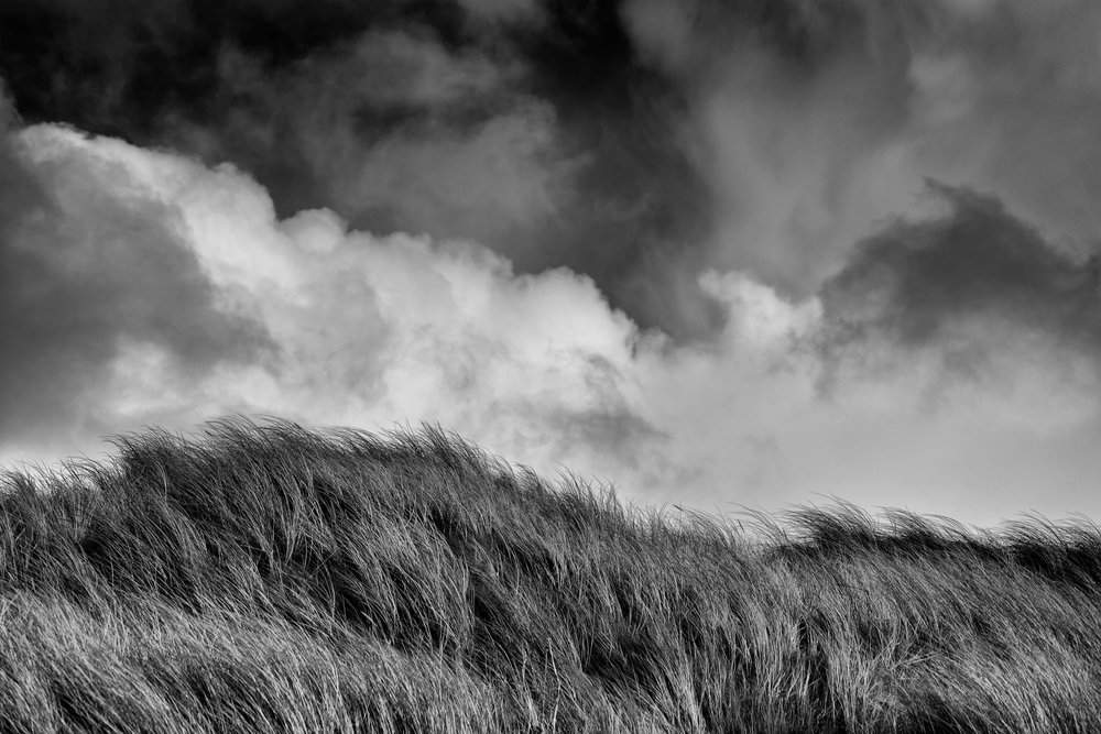 Chris Clor black and white sky and field
