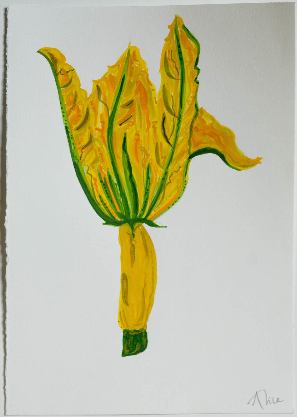 Alice Straker -Corn