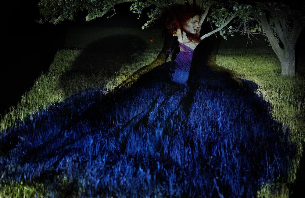 Anatol de cap Rouge - Fleurs - blue