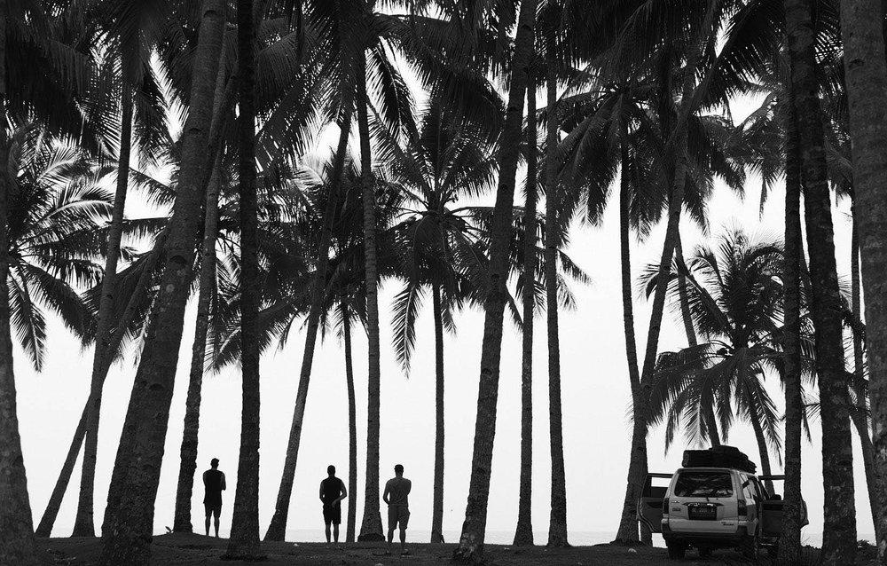 Grant Smith - landscape silhouette