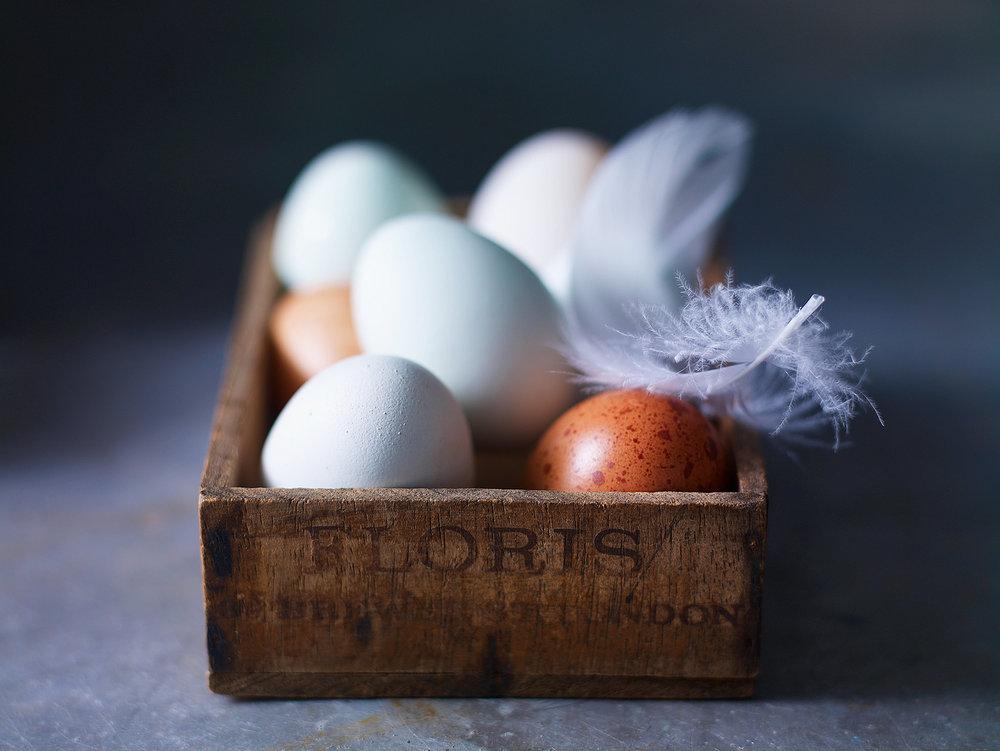 Stuart West - Eggs