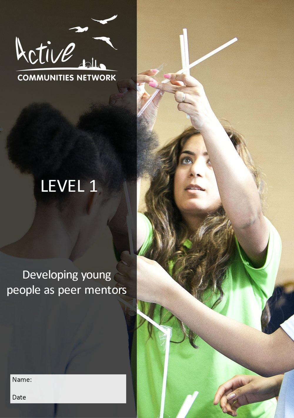 Peer Mentor.jpg