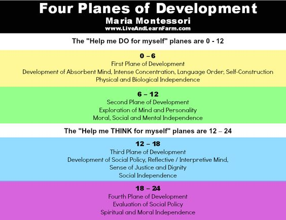 Four Planes of Development by Matria Montessori source: www.LiveAndLearnFarm.com