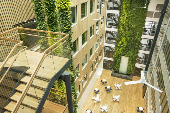 plantwalls-biophilic-design.jpg