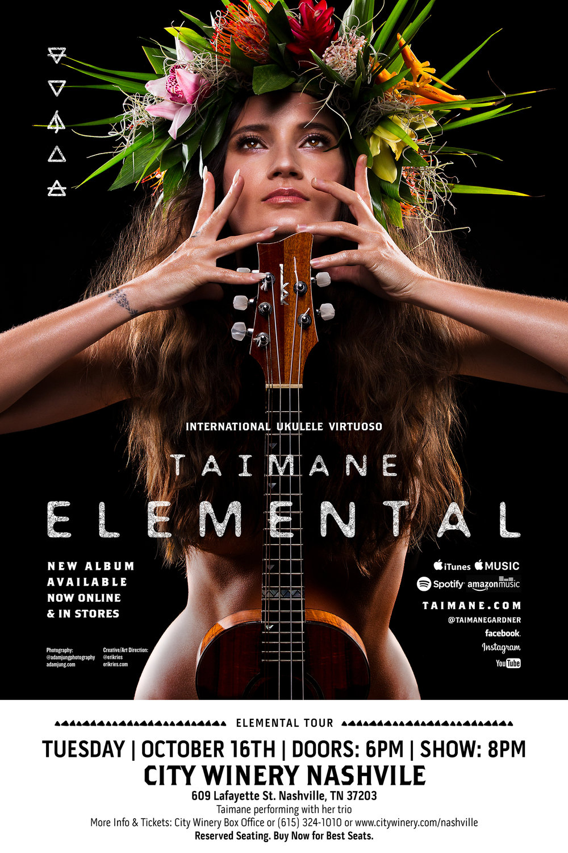 Taimane Elemental 24x36_lr2400x3600 Venue Poster CITY WINERY NASHVILLE.jpg